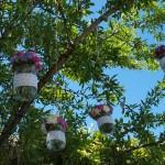 Tarros colgantes con flores
