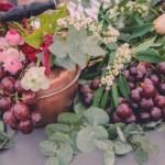 Las flores de Romeo y Julieta